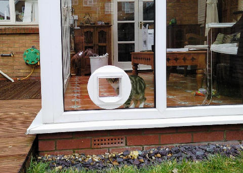 Cat flap fitted in a conservatory double glazed window, Portsmouth, Hampshire