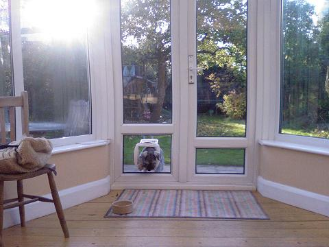 Dog door fitted in double glazed glass door, by www.catflapfitter.co.uk