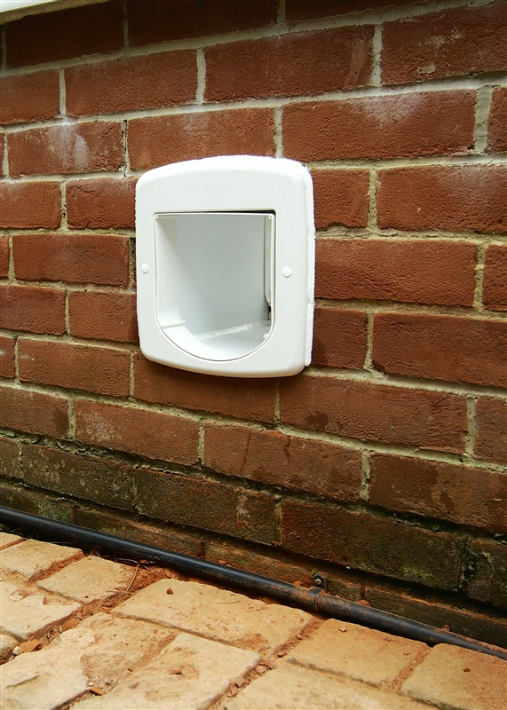 Cat flap fitted neatly in brick wall