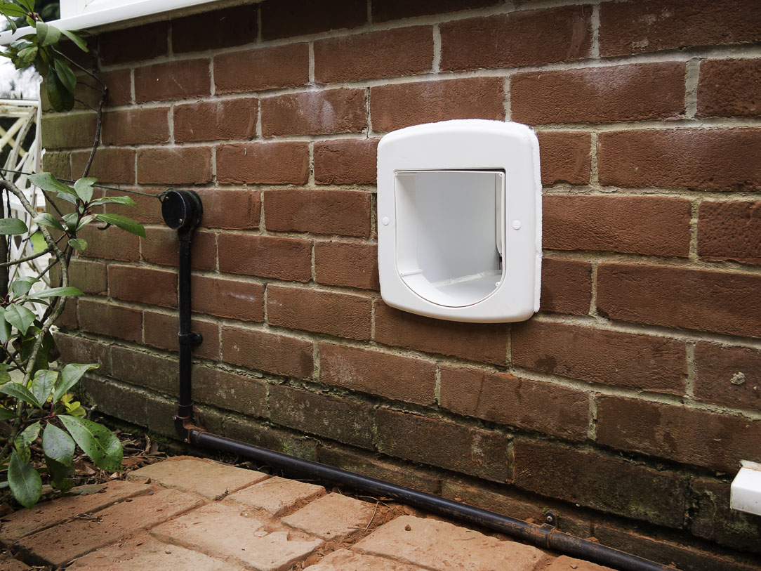 Cat Flap Installation In Wall Brick Rendered And Breeze